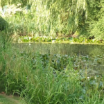 bed-breakfast-east-anglia-lincoln-horncastle-pond-0138bankes-price