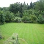 bed-and-breakfast-surrey-gatwick-horley-langshott-wood-garden-1325Rapoport