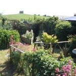 Bridport-Weymouth-Dorset-garden-1338Rawlings