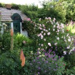 bed-and-breakfast-Berkshire-Reading-Newbury-Meadow-Thatch-garden-6065 Fenn