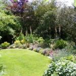 Wareham-Lulworth-Cove-Dorset-garden-5060Brachi