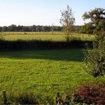 new-forest-bed-breakfast-lyndhurst-primrose-cottage