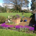 bed-and-breakfast-Berkshire-Reading-Newbury-garden-6065 Fenn