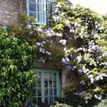 bed-and-breakfast-cambridgeshire-peterborough-oundle-flowers-6152Dixon