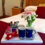 bed-breakfast-shropshire-ludlow-leominster-hospitality-6160goldthorpe
