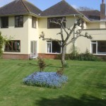 bed-and-breakfast-sussex-chichester-enford-mead-garden-9061Sampson