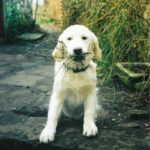 0042 Deacon_Bramble