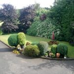 bed-breakfast-ireland-londonderry