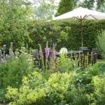 Salisbury-Shaftesbury-Wiltshire-garden-1133White