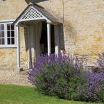dorset-bed-breakfast-bridport-lyme-regis-knapp-farmhouse