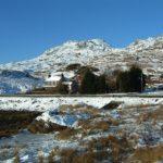 2111Whitehead_snow