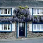 bed-breakfast-wales-pembrokeshire-carmarthen-swan_cottage