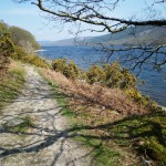 bed-breakfast-cumbria-ambleside-orchard_cottage