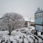bed-breakfast-cumbria-lake_district-coniston-ambleside-orchard_cottage