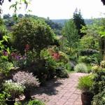 Dunster-Minehead-Devon-gardens-2672Lamacraft