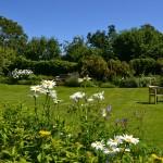 Taunton-Tiverton-Devon-garden-7081Orr