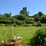 Taunton-Tiverton-Devon-garden-view-7081Orr