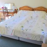 bed-breakfast-hampshire-winchester-greenvale-farm