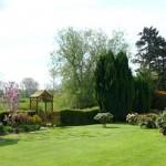 Tiverton-Honiton-Devon-garden-8010Parish