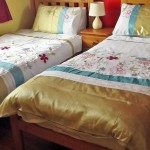 Hillview B&B Tulla Co Clare Twin room 0514 Halpin