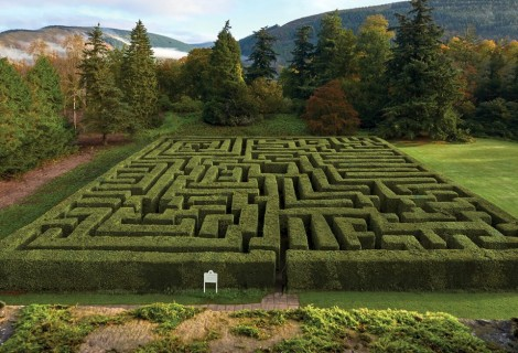 Great British Mazes