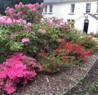 Roseland House, MERTHYR TYDFIL Ref: 0298