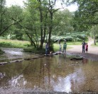 They call it the Jewel of the West Midlands. Cannock Chase, England's smallest Area of Outstanding Natural Beauty